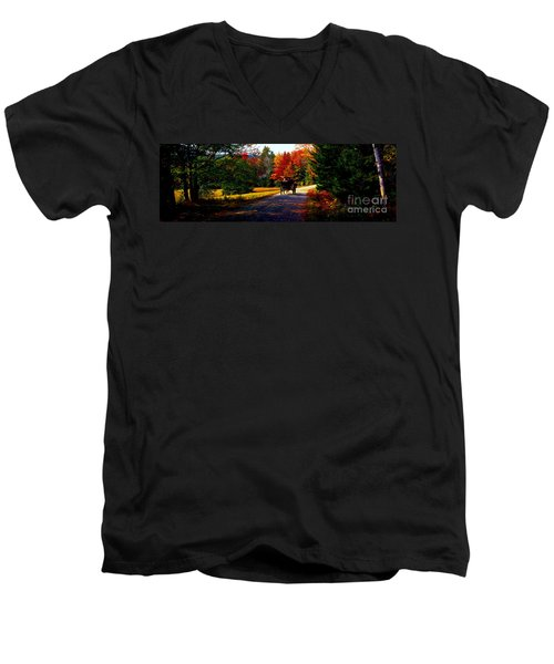 Men's V-Neck T-Shirt featuring the photograph  Acadia National Park Carriage Trail Fall  by Tom Jelen