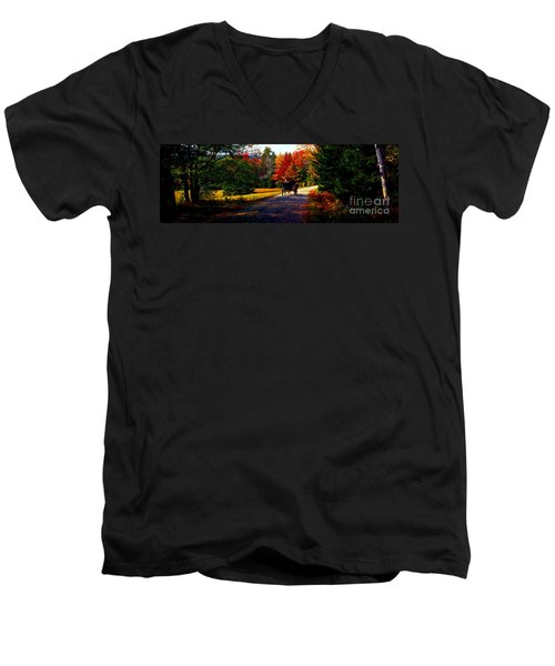 Acadia National Park Carriage Trail Fall  Men's V-Neck T-Shirt
