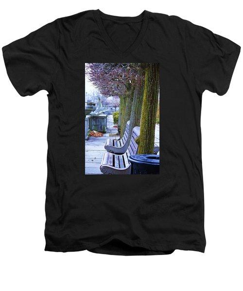 Colours In The Park Men's V-Neck T-Shirt by Al Fritz