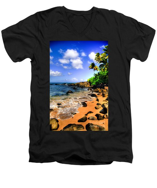 Laniakea Beach Men's V-Neck T-Shirt
