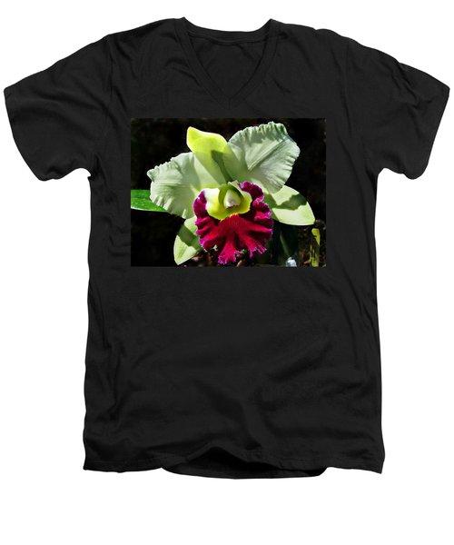 Rlc Pratum Green ' Boonserm ' Hcc Aos 2007 Men's V-Neck T-Shirt