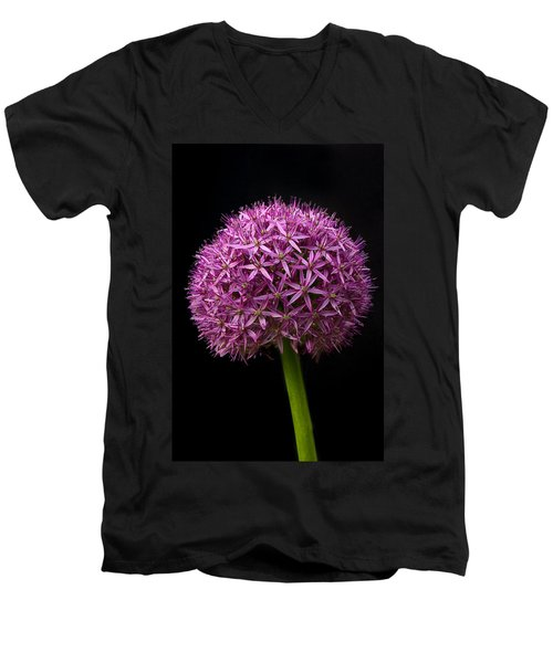 Single Purple Allium Men's V-Neck T-Shirt