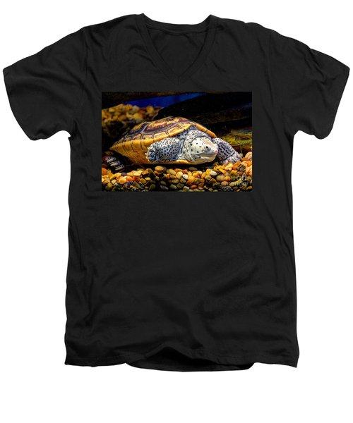 Sea Turtle Men's V-Neck T-Shirt by Savannah Gibbs