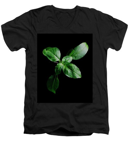 A Sprig Of Basil Men's V-Neck T-Shirt