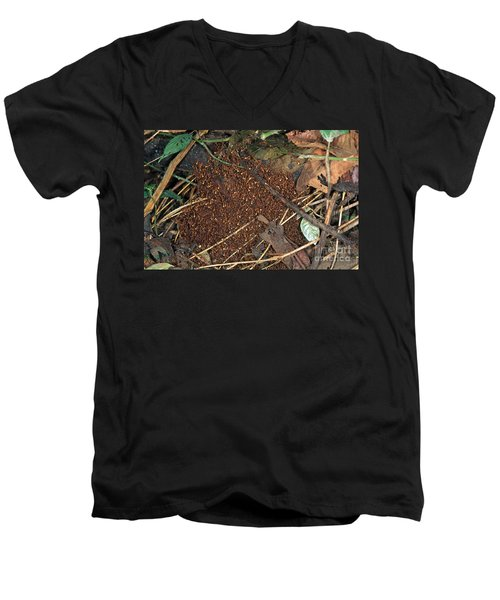 Army Ant Bivouac Site Men's V-Neck T-Shirt by Gregory G. Dimijian, M.D.