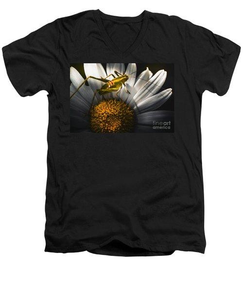 Australian Grasshopper On Flowers. Spring Concept Men's V-Neck T-Shirt