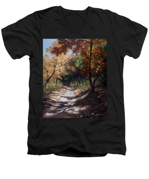 Autumn Trails Men's V-Neck T-Shirt