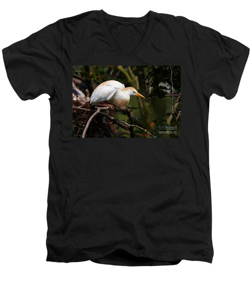 Cattle Egret In A Tree Men's V-Neck T-Shirt