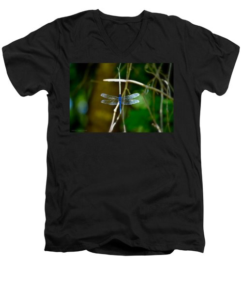 Dragonfly Men's V-Neck T-Shirt by Tara Potts