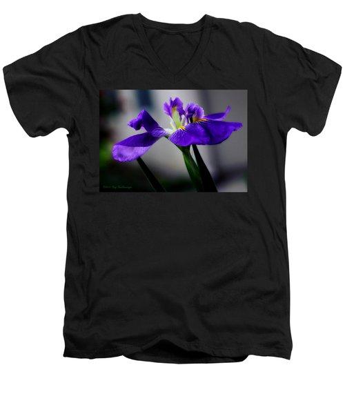 Elegant Iris Men's V-Neck T-Shirt