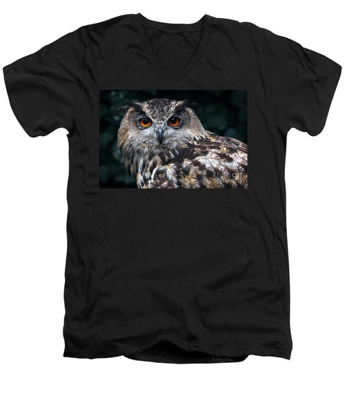 European Eagle Owl Men's V-Neck T-Shirt
