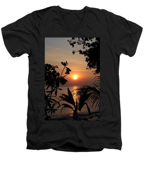 Evening Sun Men's V-Neck T-Shirt
