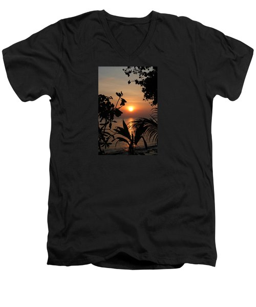 Evening Sun Men's V-Neck T-Shirt