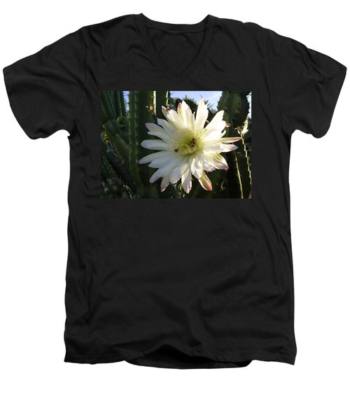 Men's V-Neck T-Shirt featuring the photograph Flowering Cactus 1 by Mariusz Kula