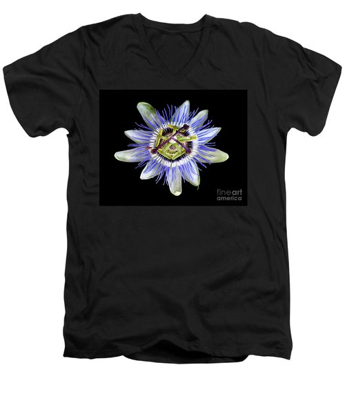 Men's V-Neck T-Shirt featuring the photograph Fly's Passion by Jennie Breeze