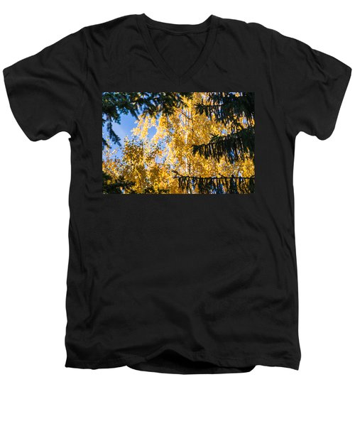 Forest Tale - Featured 3 Men's V-Neck T-Shirt