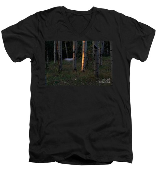 Ghostly Apparition Men's V-Neck T-Shirt