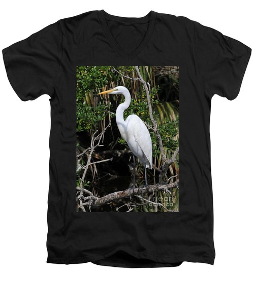 Great Egret Perched In Fallen Tree Men's V-Neck T-Shirt