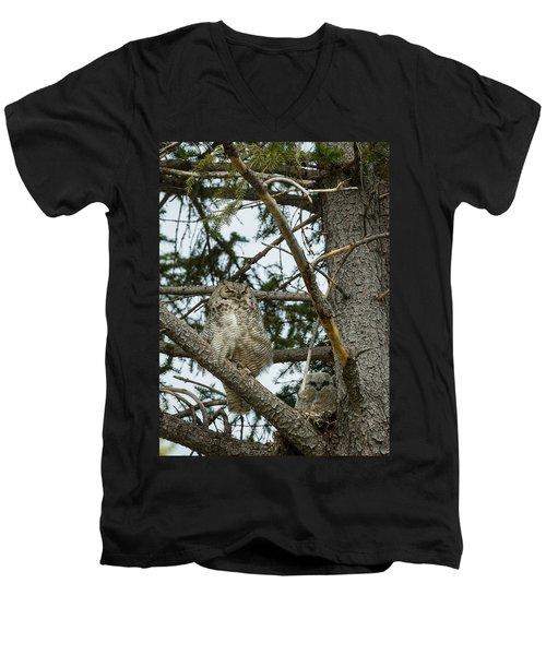 Great Horned Owls Men's V-Neck T-Shirt