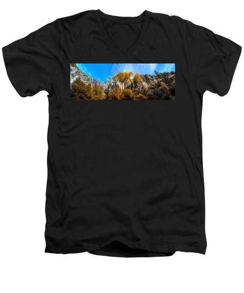 Men's V-Neck T-Shirt featuring the photograph Guardians by David Andersen