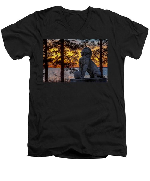 Lion At Sunset Men's V-Neck T-Shirt