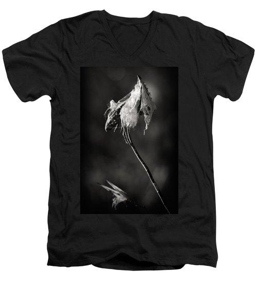 Milkweed Pod Men's V-Neck T-Shirt