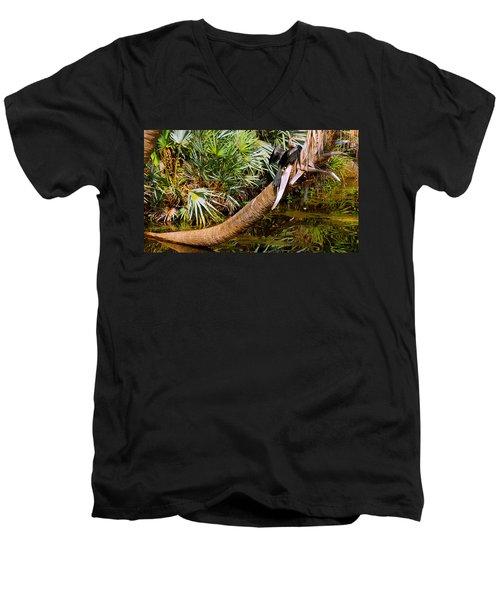 Oriental Darter Anhinga Melanogaster Men's V-Neck T-Shirt