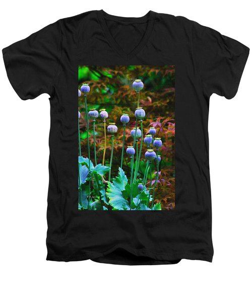 Poppy Seed Pods Men's V-Neck T-Shirt