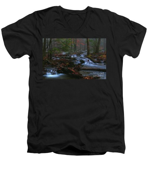 Smoky Mountain Color Men's V-Neck T-Shirt