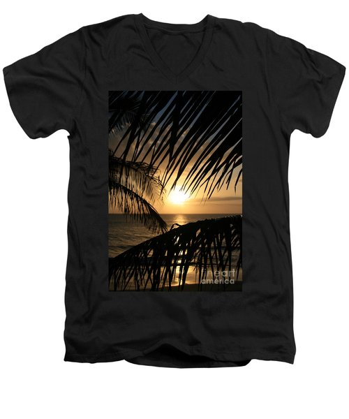 Men's V-Neck T-Shirt featuring the photograph Spirit Of The Dance by Sharon Mau