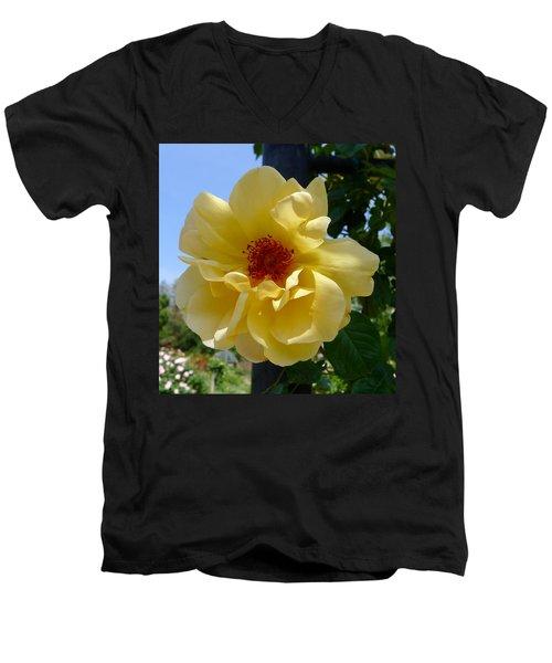 Sunny Yellow Rose Men's V-Neck T-Shirt