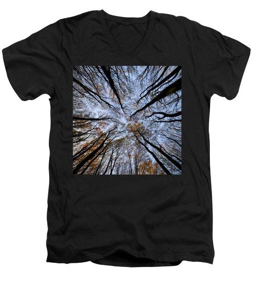 Tall Trees Men's V-Neck T-Shirt