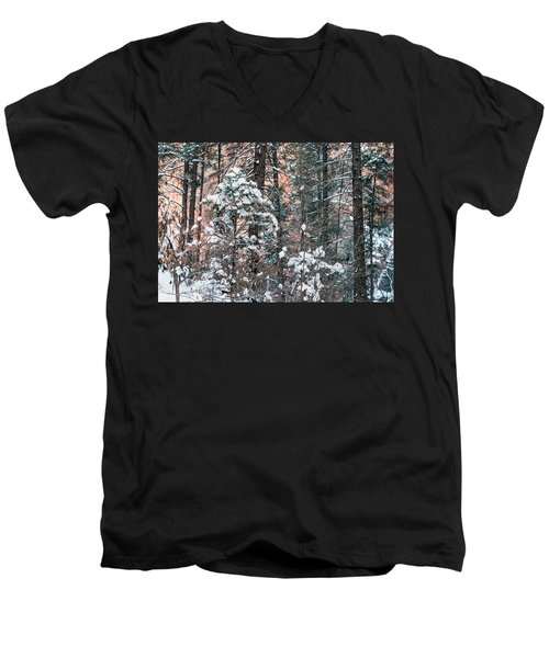 West Fork Snow Men's V-Neck T-Shirt by Tam Ryan