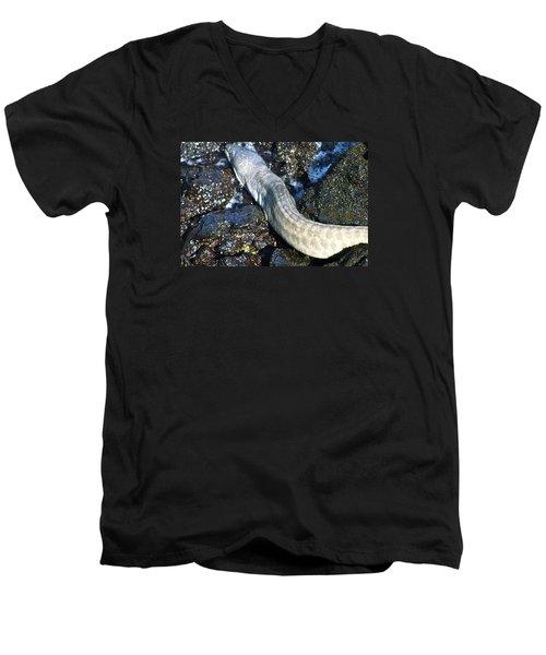 White Moray Eel Men's V-Neck T-Shirt