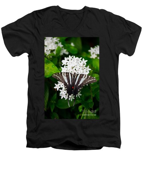 Zebra Swallowtail Men's V-Neck T-Shirt