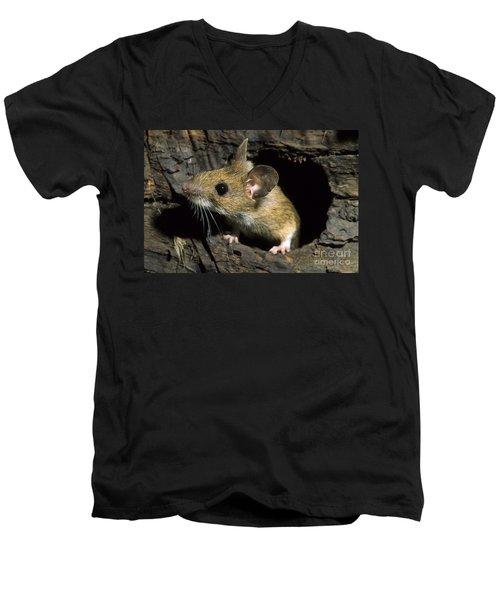 111216p259 Men's V-Neck T-Shirt
