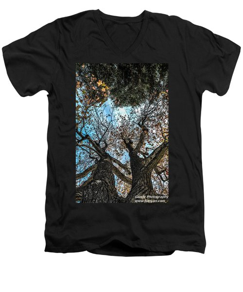1st Tree Men's V-Neck T-Shirt by Gandz Photography