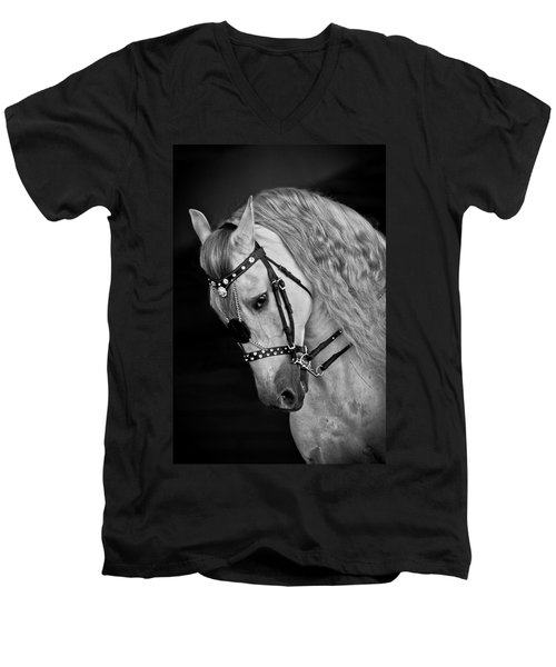 Andalusian Men's V-Neck T-Shirt by Wes and Dotty Weber
