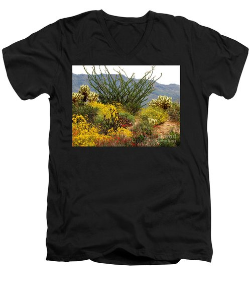 Arizona Springtime Men's V-Neck T-Shirt