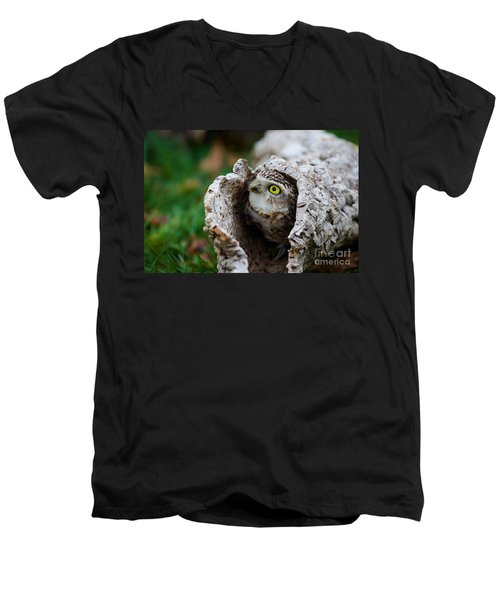 Burrowing Owl  Men's V-Neck T-Shirt