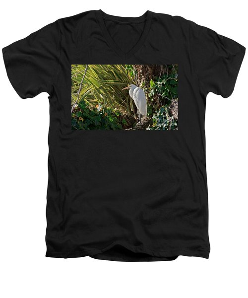 Men's V-Neck T-Shirt featuring the photograph Great Egret by Kate Brown