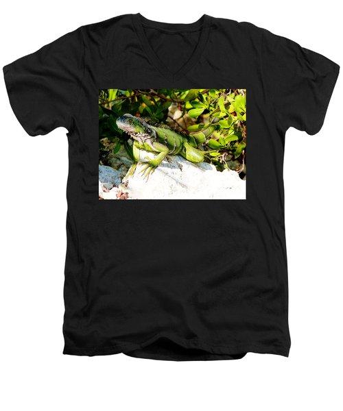 Green Iguana Men's V-Neck T-Shirt by Amar Sheow