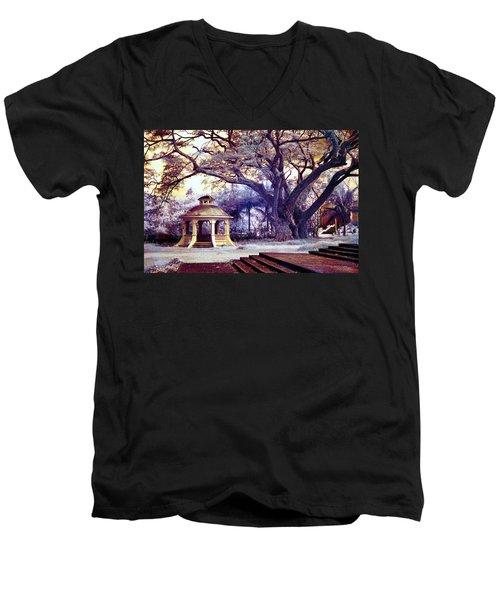In A Different Light Men's V-Neck T-Shirt