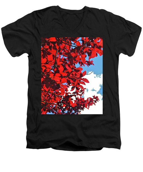 Plum Tree Cloudy Blue Sky 3 Men's V-Neck T-Shirt by CML Brown