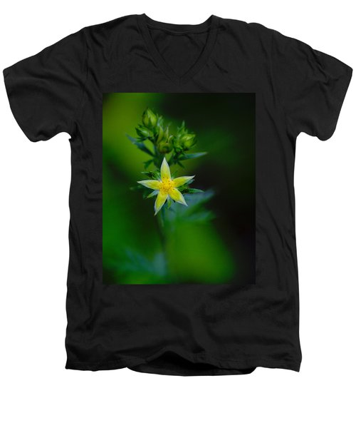 Starflower Men's V-Neck T-Shirt