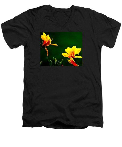 Talking Flower Heads Men's V-Neck T-Shirt