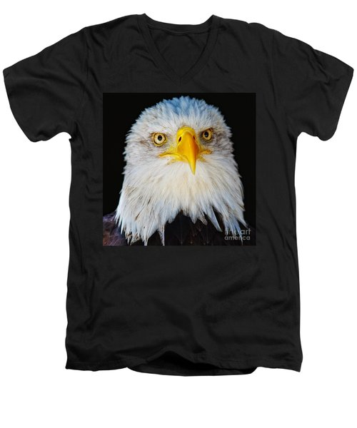 Closeup Portrait Of An American Bald Eagle Men's V-Neck T-Shirt