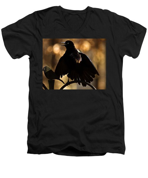 Men's V-Neck T-Shirt featuring the photograph Common Grackle by Robert L Jackson
