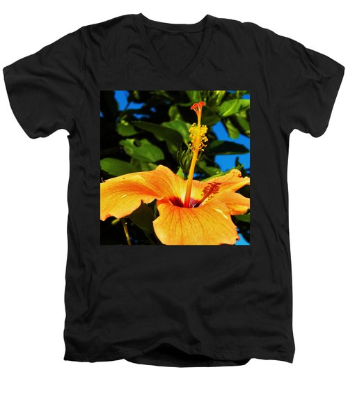 Men's V-Neck T-Shirt featuring the photograph Untouched Beauty by Faith Williams