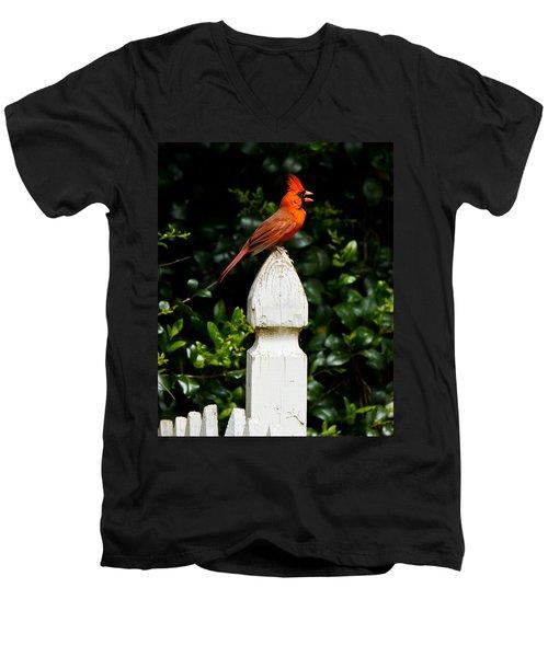 Men's V-Neck T-Shirt featuring the photograph Male Cardinal by Robert L Jackson